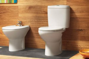 Туалетные «тонкости». Унитаз